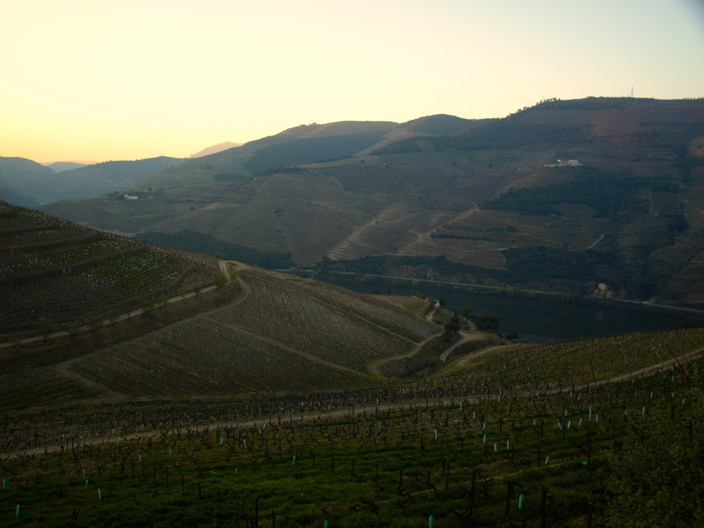 Going back to the Douro